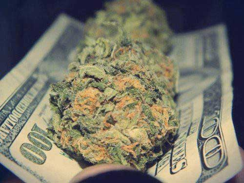 Cannabis_And_Cash1