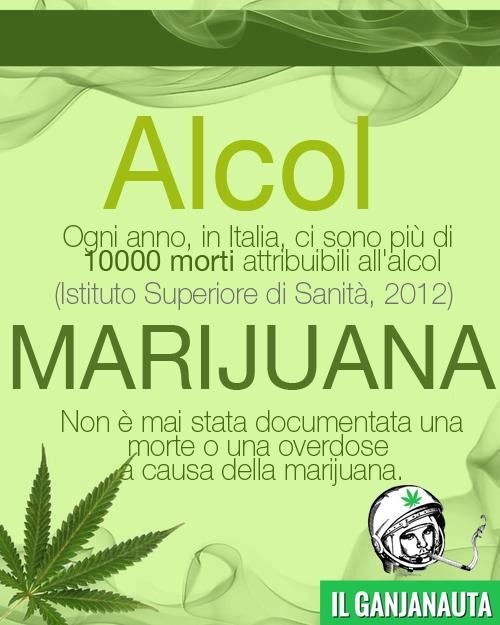 alcolvsmarijuana