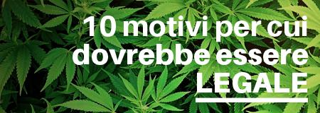 10 punti a favore della legalizzazione della Cannabis
