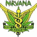nirvana_shop